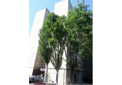 Apartamento en Guadalajara (20531-0001) - foto5