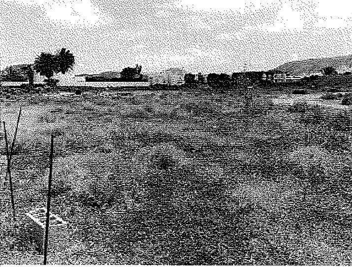 Solares en Oliva (La) (31215-0001) - foto1