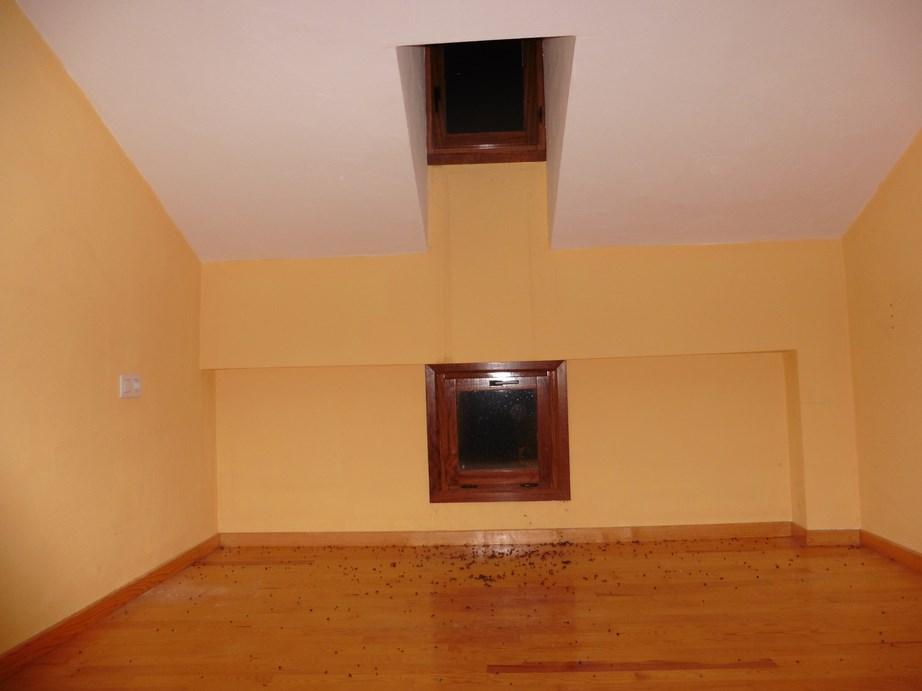 Apartamento en Alcalá de la Selva (33299-0001) - foto8
