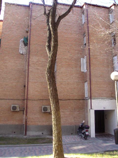 Apartamento en Madrid (35771-0001) - foto0