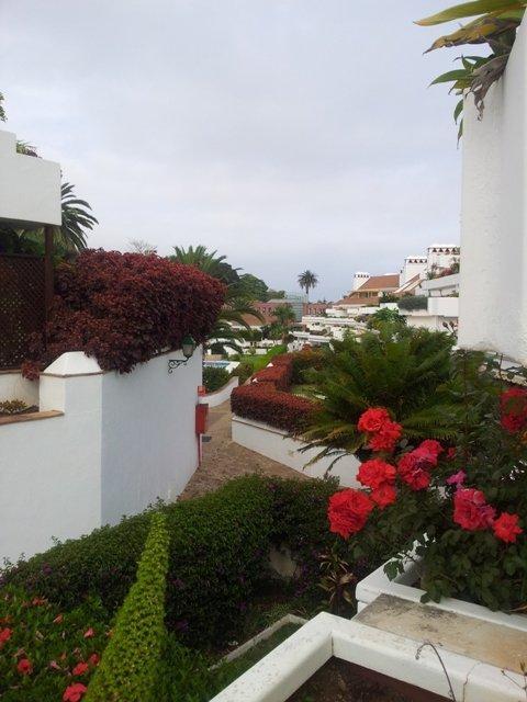 Apartamento en Puerto de la Cruz (42306-0001) - foto7