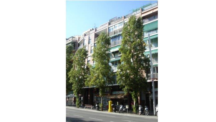 Locales en Barcelona (35356-0001) - foto0