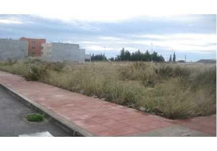Solares en Villanueva del Río Segura - 0