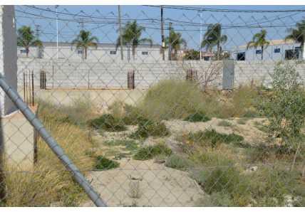 Solares en Murcia - 1