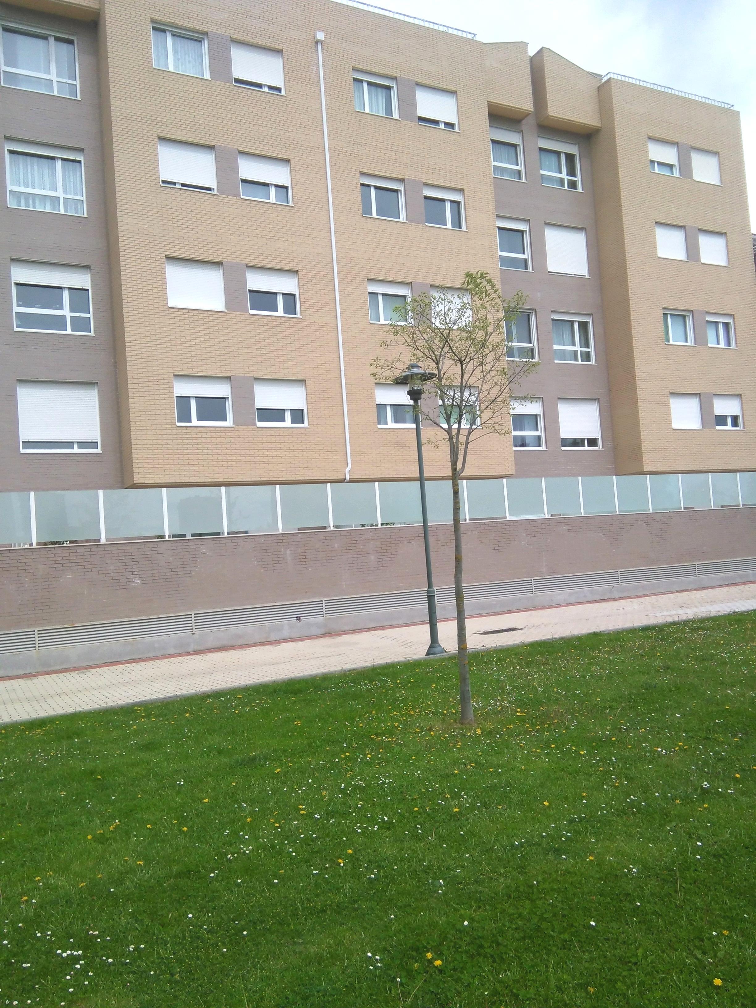 Locales en Palencia (M77611) - foto2