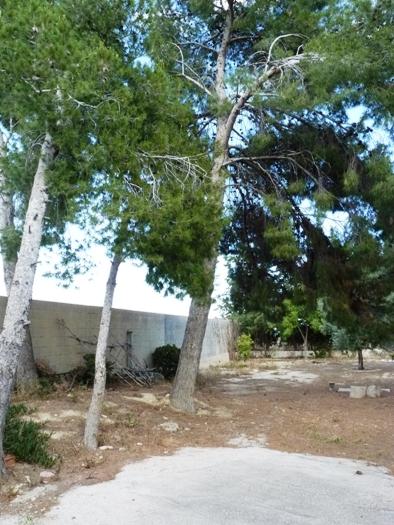 Chalet independiente en Alicante/Alacant (Chalet en Rebolledo - Alicante) - foto12