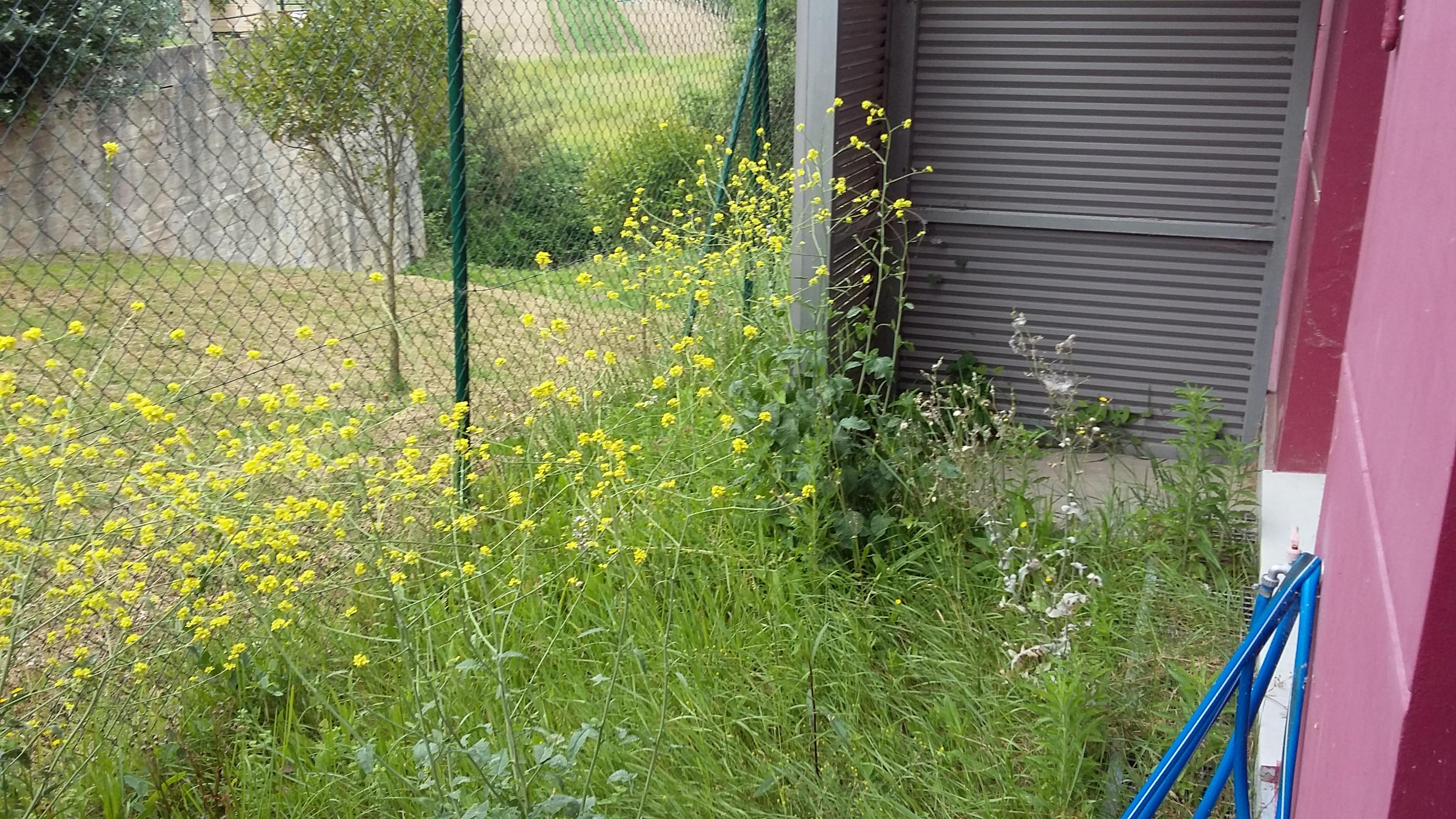 Apartamento en Lemoiz (M76808) - foto10