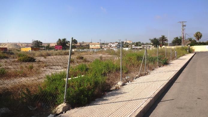 Locales en San Fulgencio (Local en San Fulgencio) - foto16