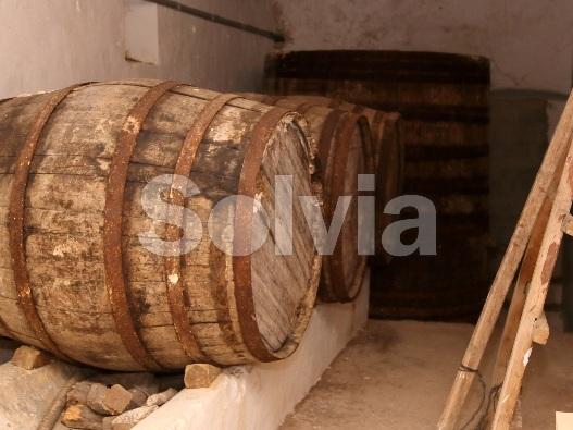 Cortijo en Castalla (Finca en Castalla) - foto14