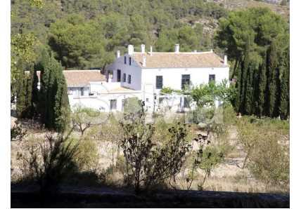 Cortijo en Castalla (Finca en Castalla) - foto20