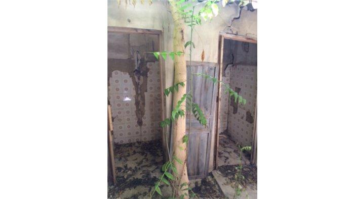 Bajo en Elda (Casa para reformar en Elda) - foto17