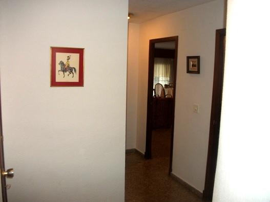 Piso en Alicante/Alacant (Vivienda en Maisonnave) - foto22