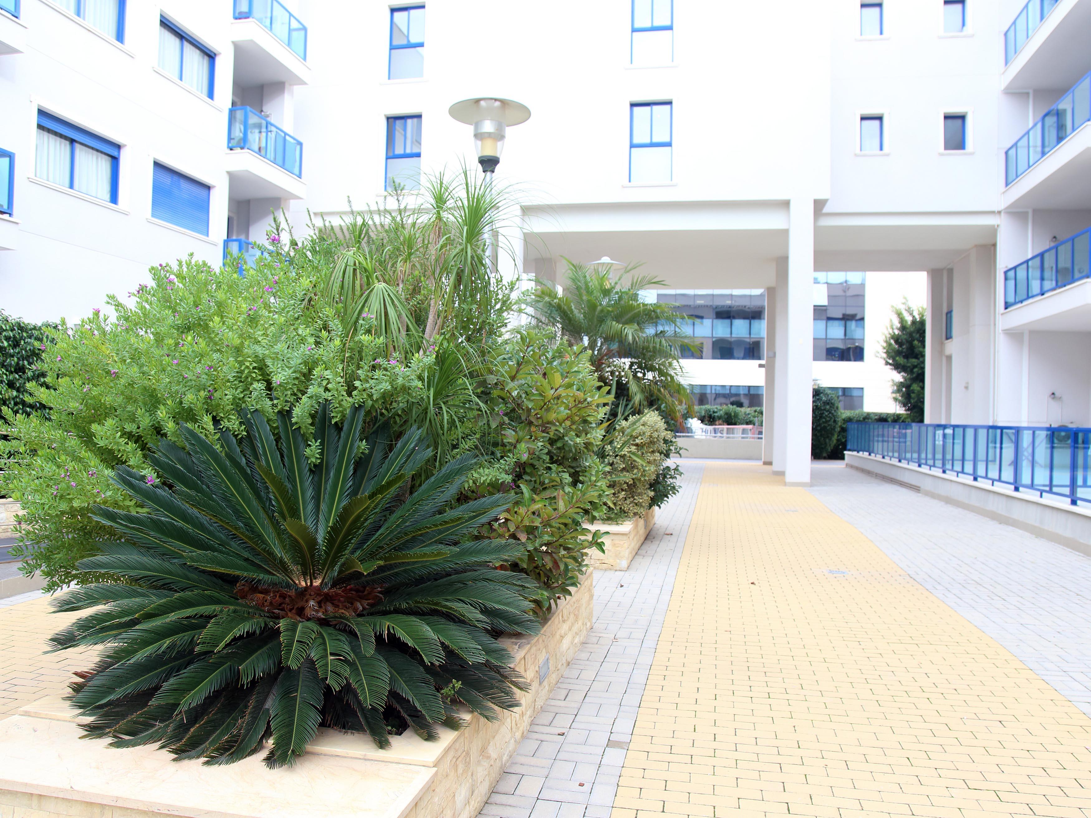 Apartamento en Alicante/Alacant (M86193) - foto8