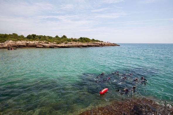 Piso en Ametlla de Mar (L') (M80057) - foto9