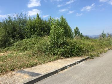 Solares en Oviedo (M86949) - foto3