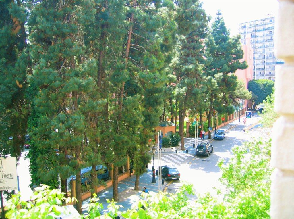 Estudio en Marbella (Estudio en Marbella) - foto7