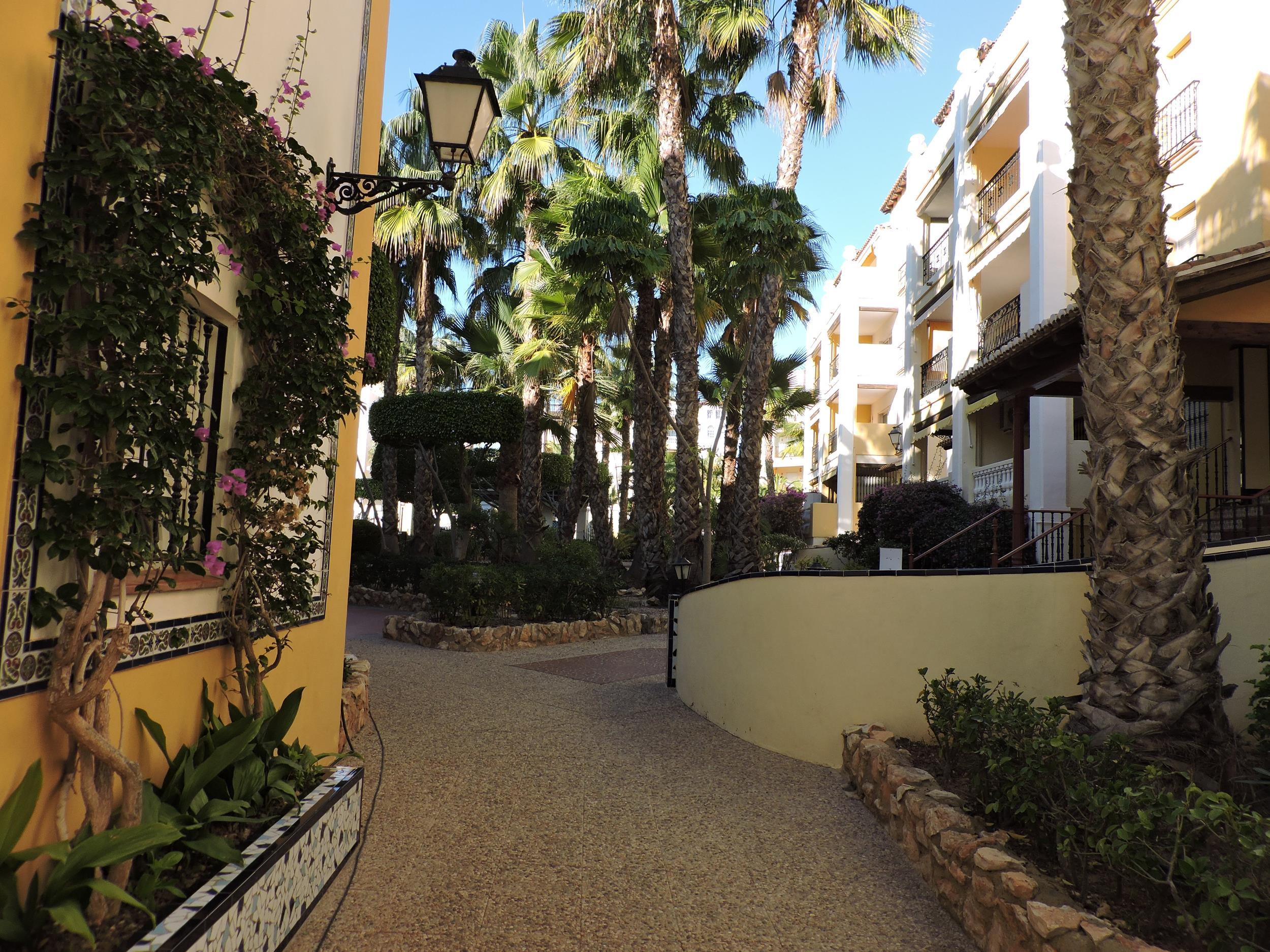 Piso en Torrevieja (Apartamento en Torrevieja-Urb Aldea del Mar) - foto3