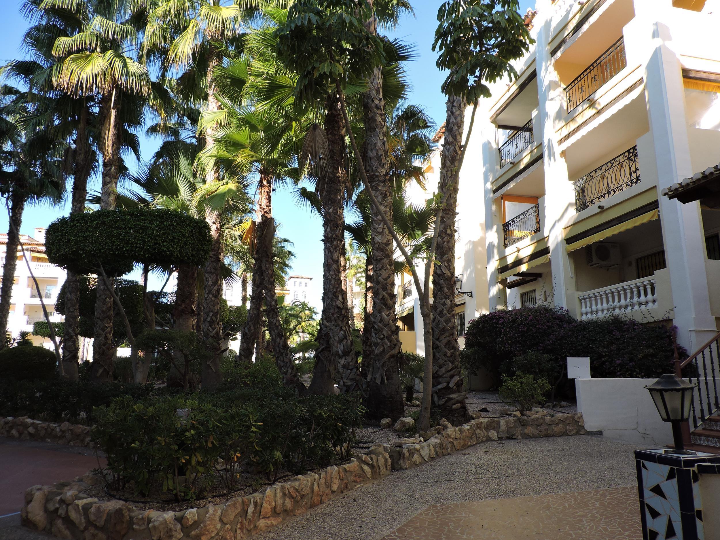 Piso en Torrevieja (Apartamento en Torrevieja-Urb Aldea del Mar) - foto2
