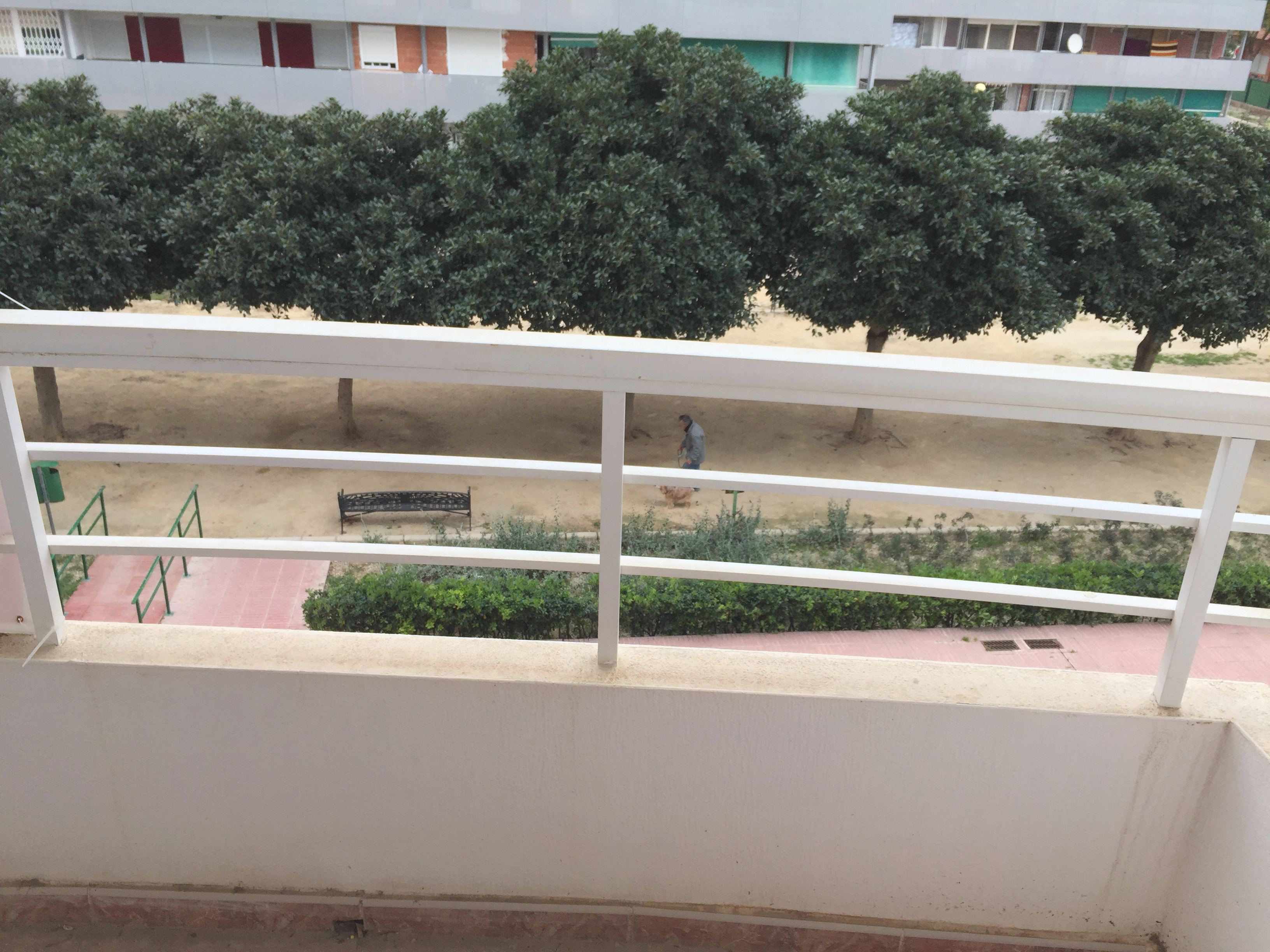 Piso en San Vicente del Raspeig (M90965) - foto3