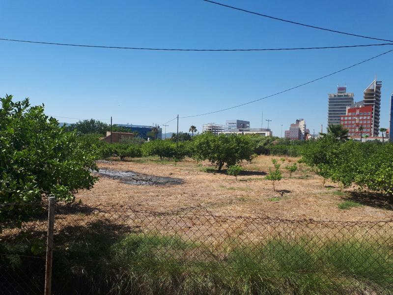Suelo urbanizable sectorizado en Murcia (Ciudad)